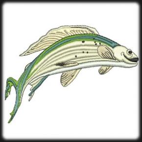 Pisztráng hal hímzés